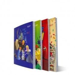 COFFRET LEGO 239PCS